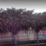 Matan a hombre afuera de clínica en Colón; esperaba a su esposa