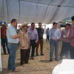 Entregan recursos para cultivos siniestrados el año pasado