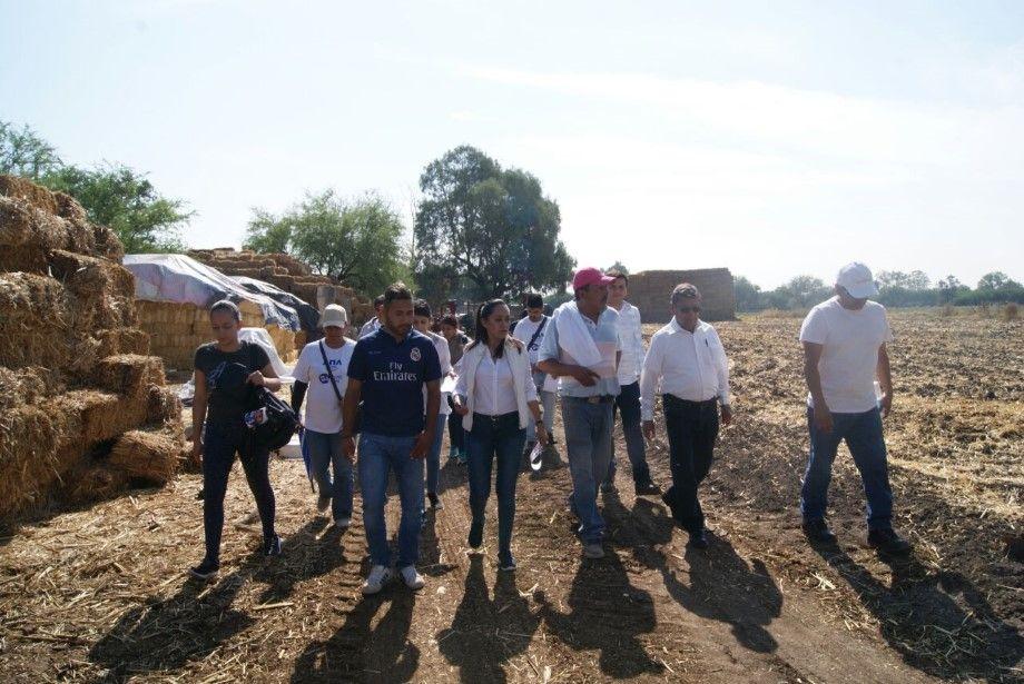 Photo of Resalta Ana Bueno trabajo prioritario por el campo en Cuerámaro