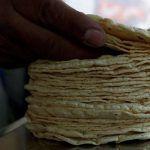 Alumnos y profesores de la UNAM inventan tortillas que ayudan a adelgazar