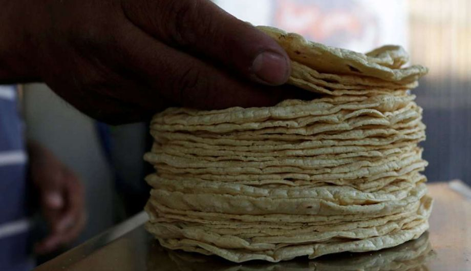 Photo of Precio promedio de la tortilla se mantiene sin  aumento: Profeco