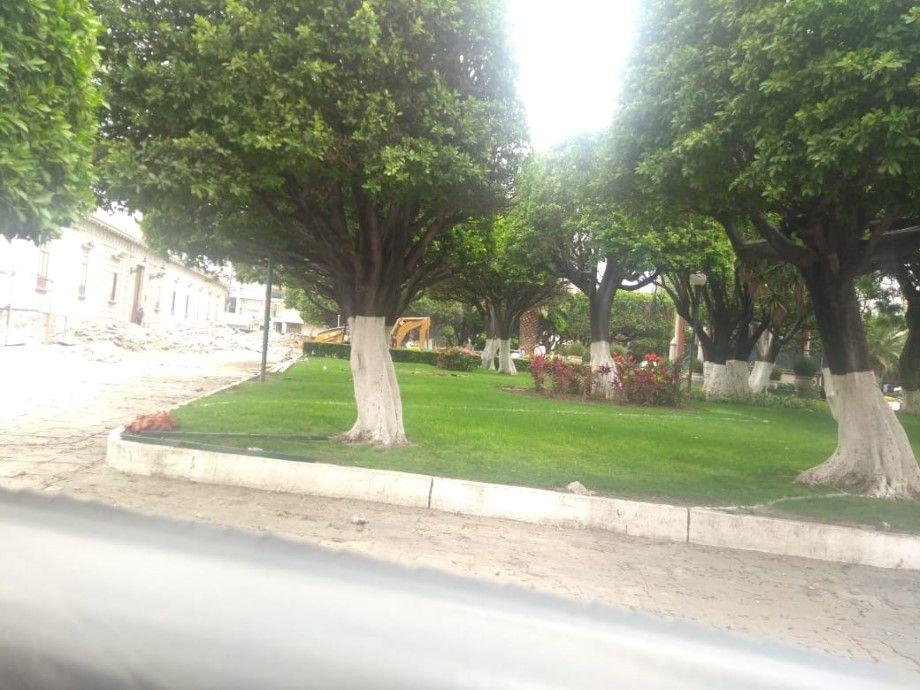 Photo of Se manifiestan contra obra en jardín principal