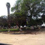 """Jardín principal: Una historia en """"reconstrucción""""…"""