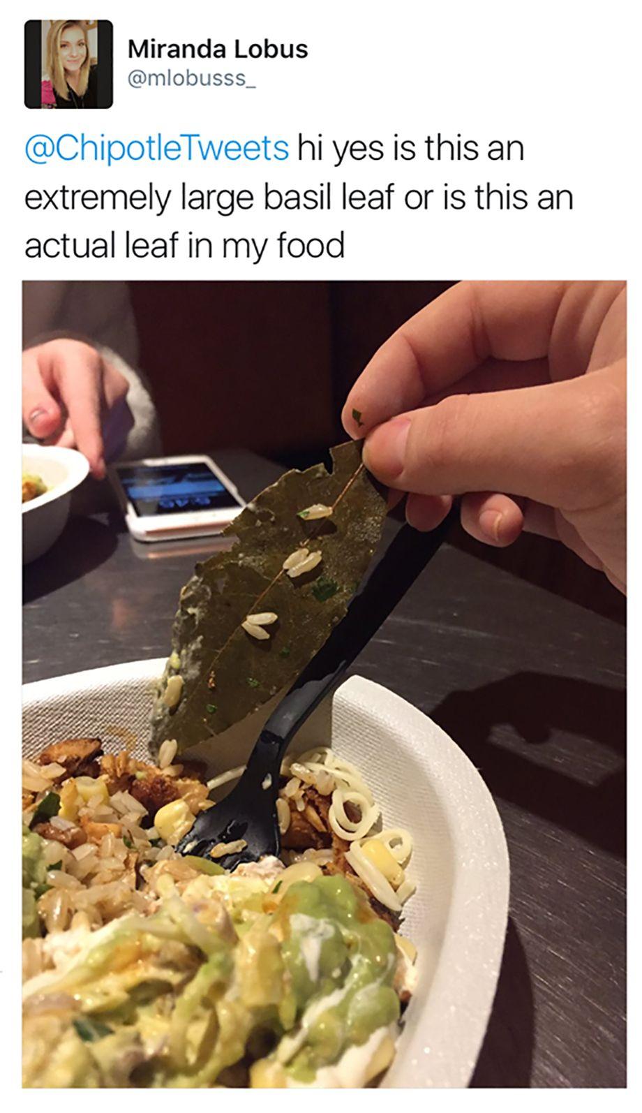 """Photo of Estadounidenses se molestan por encontrar """"hojas"""" en su comida, era laurel"""