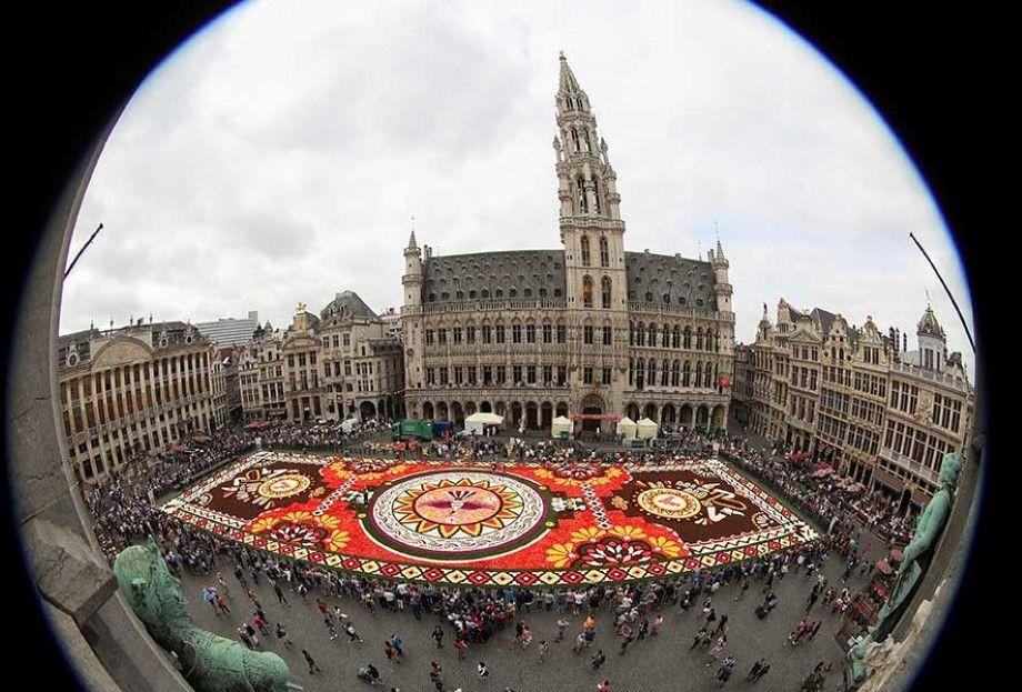 Photo of Uriangato florece en Bruselas