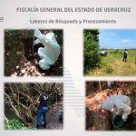 Hallan 166 cráneos en fosas en Veracruz