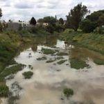 Hombre se arroja al Río Silao; lo localizan
