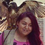 Fenix, el halcón que resurgió de las cenizas