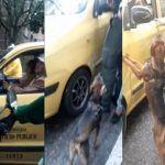 Familia abandona a su perro en transitada avenida