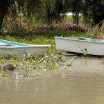 José disfruta ser pescador en la Laguna de Yuriria, aunque sólo se pesque charal