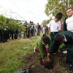 Supera Irapuato meta de reforestación