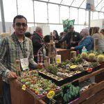 Suculentas en la Expo Agroalimentaria; cuidados para estas plantas