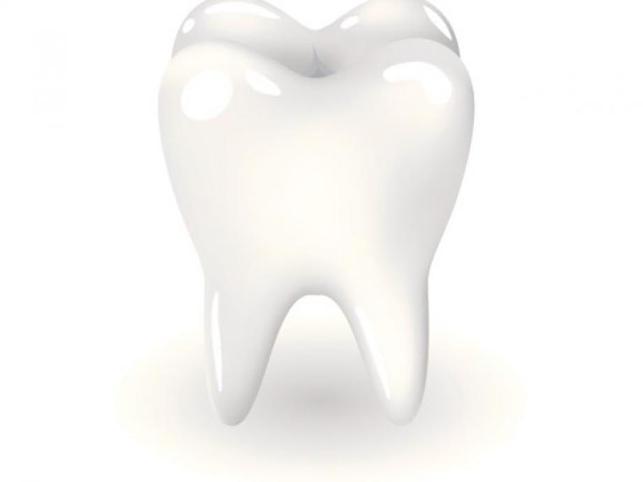 diente-muela.jpg