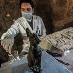 El fascinante hallazgo de los gatos momificados en Egipto