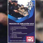 No a la eutanasia; PF lanza solicitud para adoptar perros policias