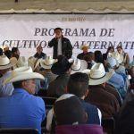 Entregan semilla a más de 250 productores dobladenses