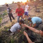 Reforestan comunidad San Luis el Alto