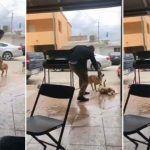 """""""Fue una acción detestable"""", dice Miguel Riquelme sobre sujeto que atacó a un perro en Piedras Negras"""