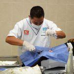 Arrancó campaña de esterilización de mascotas