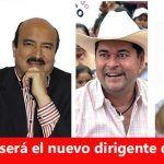 Leo Solorzano, JAMATA, Yulma Rocha y Clemente buscarán dirigir al PRI