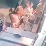 Video: Perro roba oso de peluche en San Valentín