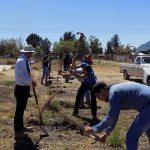 Suman esfuerzos jóvenes y gobierno para reforestación en la comunidad de Ramales