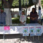 Con Feria de Salud comienza Jornada contra Dengue