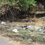 Pondrán en marcha campaña de limpieza «Embelleciendo mi Comunidad»