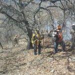 Incendio en la Sierra no afecto territorio de Pénjamo