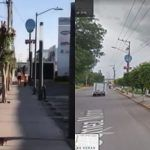 Denuncian «desmoche» de árboles para no tapar vista a negocios en Gómez Morín