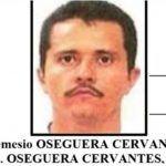 'El Mencho' apostó hasta 2 millones de pesos en peleas de gallos