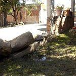 Grietas en paredes y pisos rotos: Fallas geológicas en Abasolo