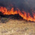Al mes, se registran hasta 55 incendios de pastizal en Pénjamo