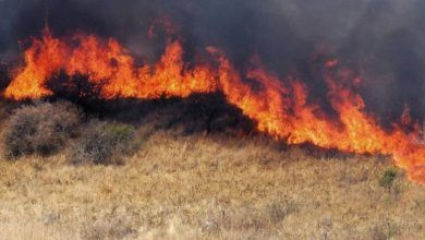 Photo of Al mes, se registran hasta 55 incendios de pastizal en Pénjamo