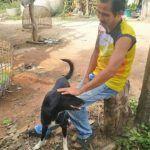 Perro rescata a un bebé vivo en Tailandia