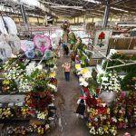 Mejoran mercados previo a temporadas de lluvias