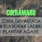 Destruyen cerros para plantar agave y hacer ladrillos, en Cuerámaro