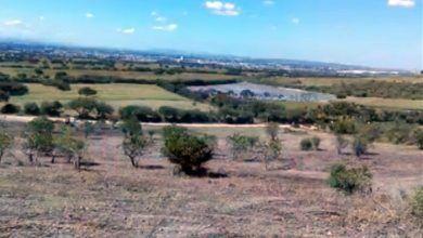 """Photo of GARYGO vende terrenos en áreas naturales protegidas; """"no presenta permisos"""""""