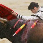 Toro se deja limpiar las lágrimas y torero lo mata