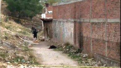 Photo of Una quedó con las manos atadas, la otra envuelta en una cobija: Mujeres asesinadas