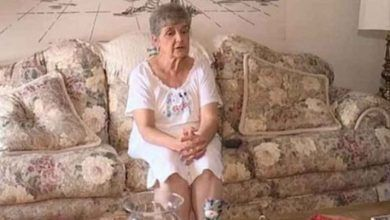 Photo of Abuelita irá a la cárcel por alimentar a gatos sin hogar