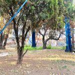 Bola del Agua de emblema de Irapuato a basurero y zona insegura