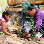 Guanajuato Celebra Día Nacional del Árbol con Reforestaciones