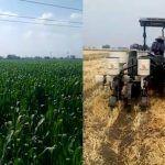 Productores de Abasolo, Irapuato y Cuerámaro descontentos por bajos precios