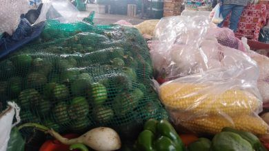 Photo of Sube precio de jitomate y limón