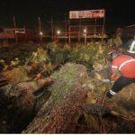 Demasiados árboles han caído en el municipio