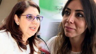 Photo of Celeste Gómez renuncia a la dirigencia del PRI; llega «Yulma Rocha»