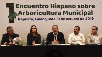 Photo of Irapuato sede de encuentro arboricultura