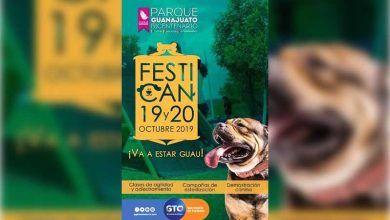 """Photo of Promueven el cuidado y la protección de perros en """"Festican 2019"""""""