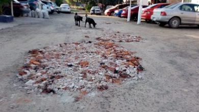Photo of Ciudadanos piden mejoras para su calle